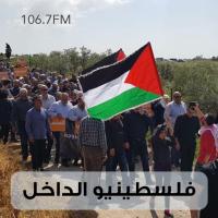 فلسطينيو الداخل